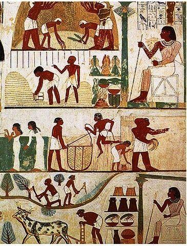 Ancient Egyptian Farmers Calendar Wall mural showing land