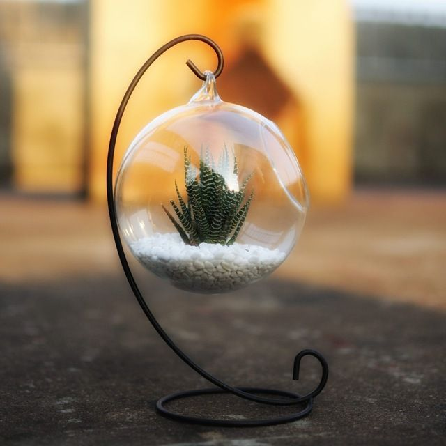 Glass-Hanging-Vase-Planter-Pot-Tea-Light-Metal-Holder-Succulent-Air-plant-Globe.jpg_640x640.jpg 640×640 pikseli