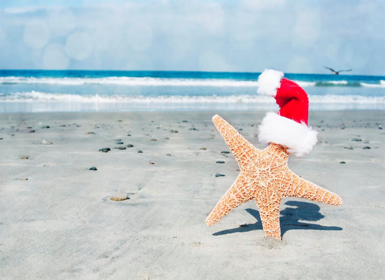 A Beachy Christmas- Santa Starfish, Bokeh Beach Photography, A Beach ...