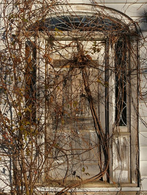 Front door by Christopher Busta-Peck, via Flickr. Painesville, Ohio