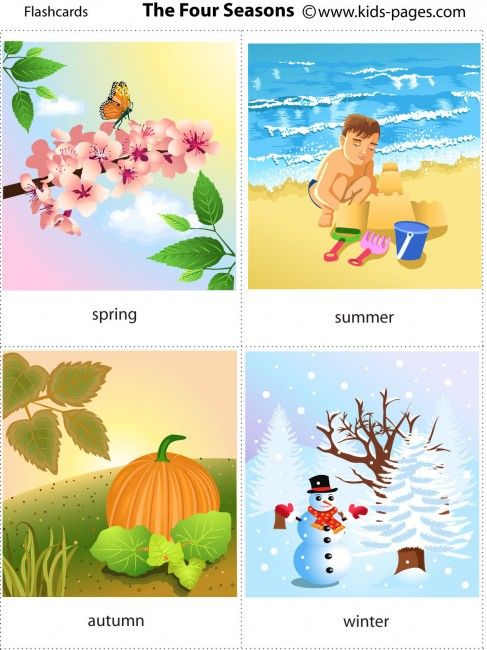 Free printable four seasons flashcards and weather pinterest flashcard also rh