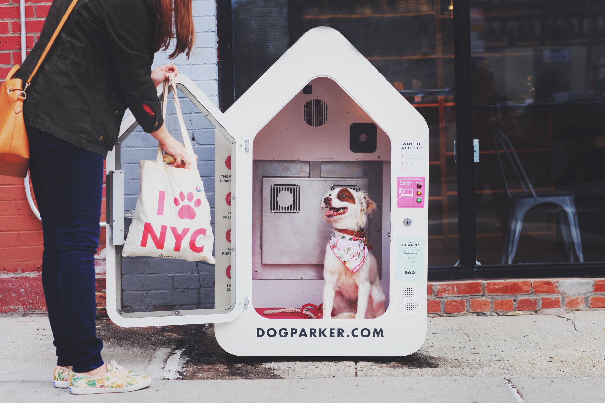 Dog Parker Cabin To Safely Leave Your Dog While You Shop Go For
