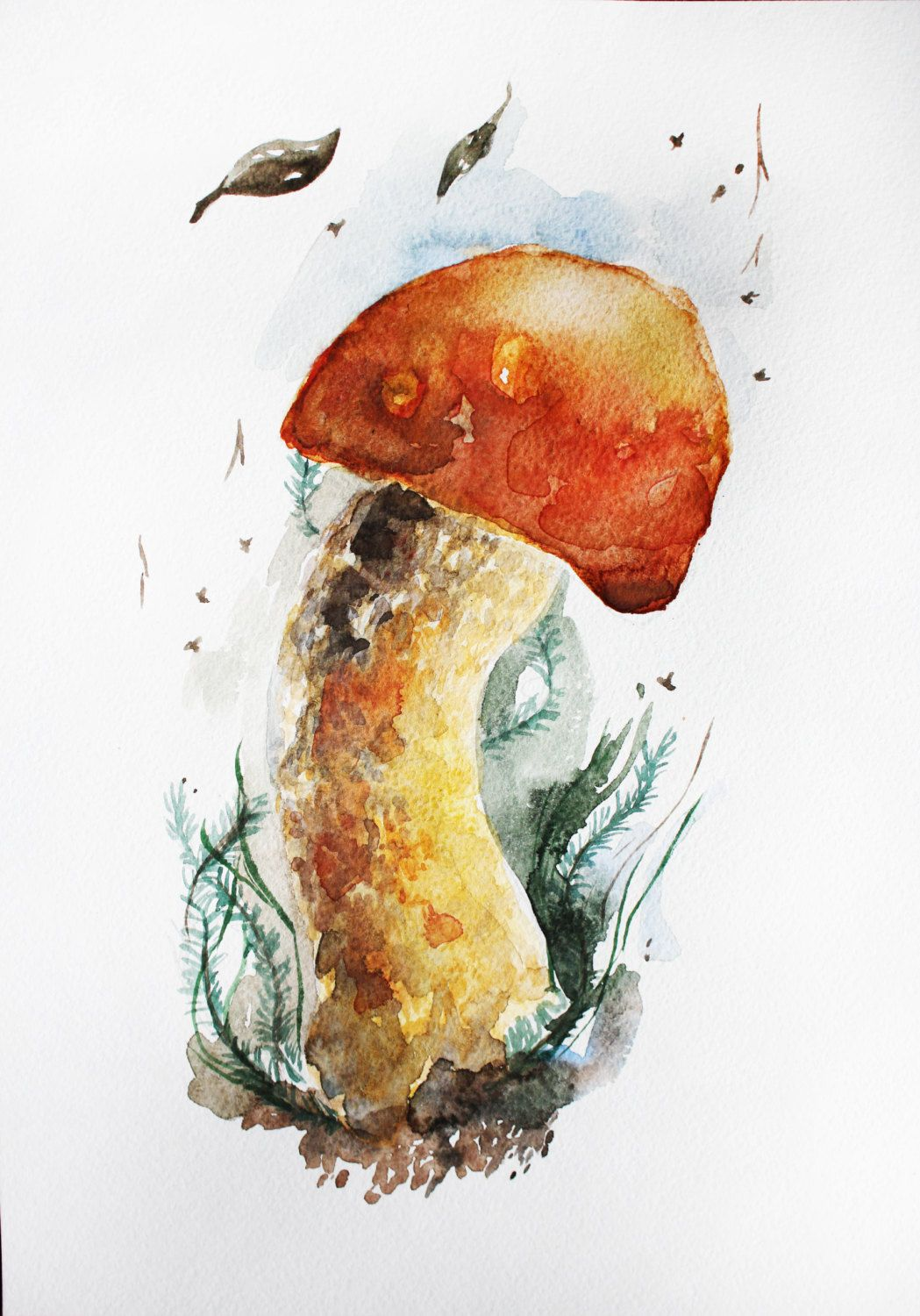 Original Watercolor Painting Of Mushroom Mushroom Art Botanical