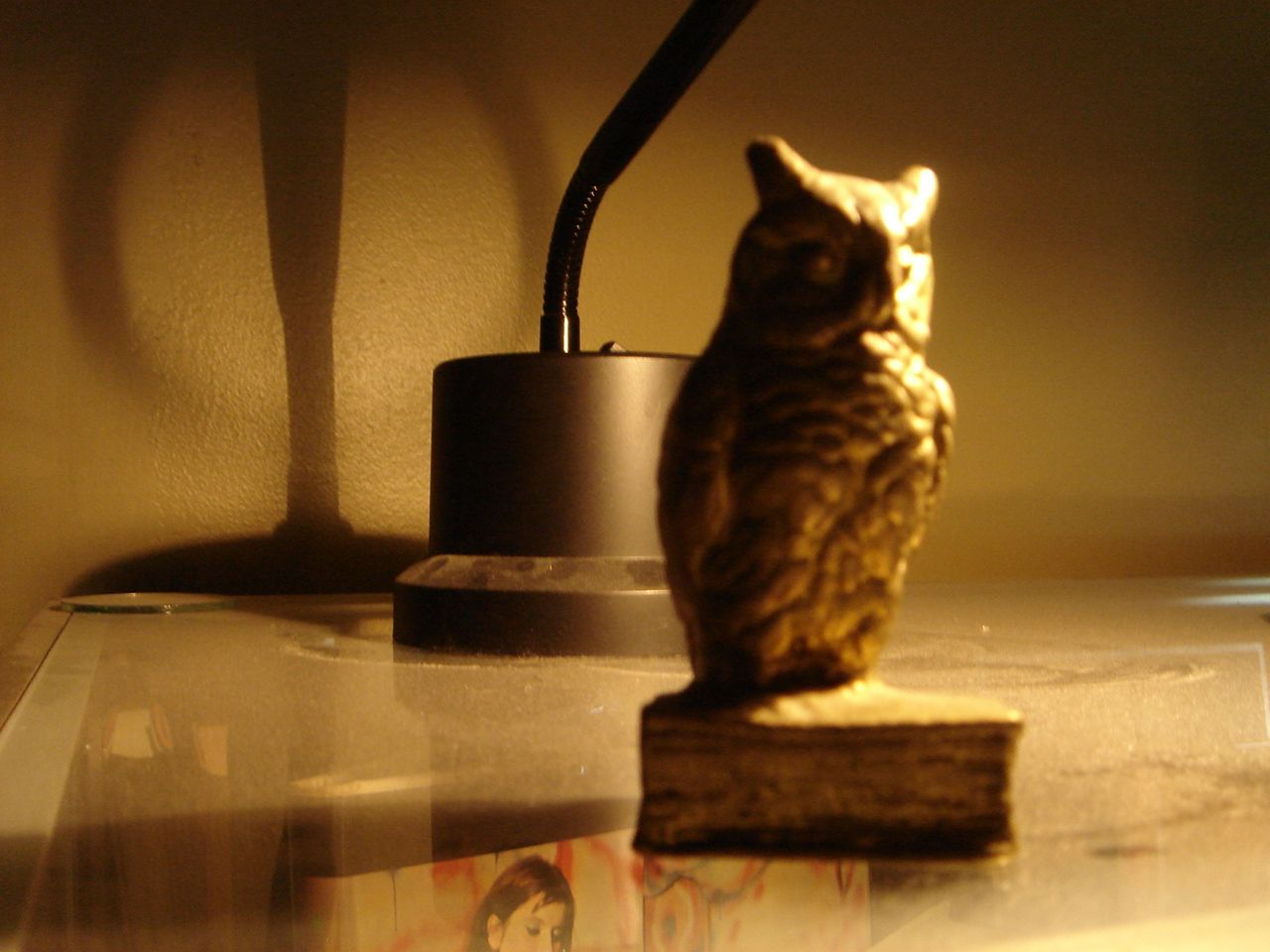 Brass owl at Panoply Books