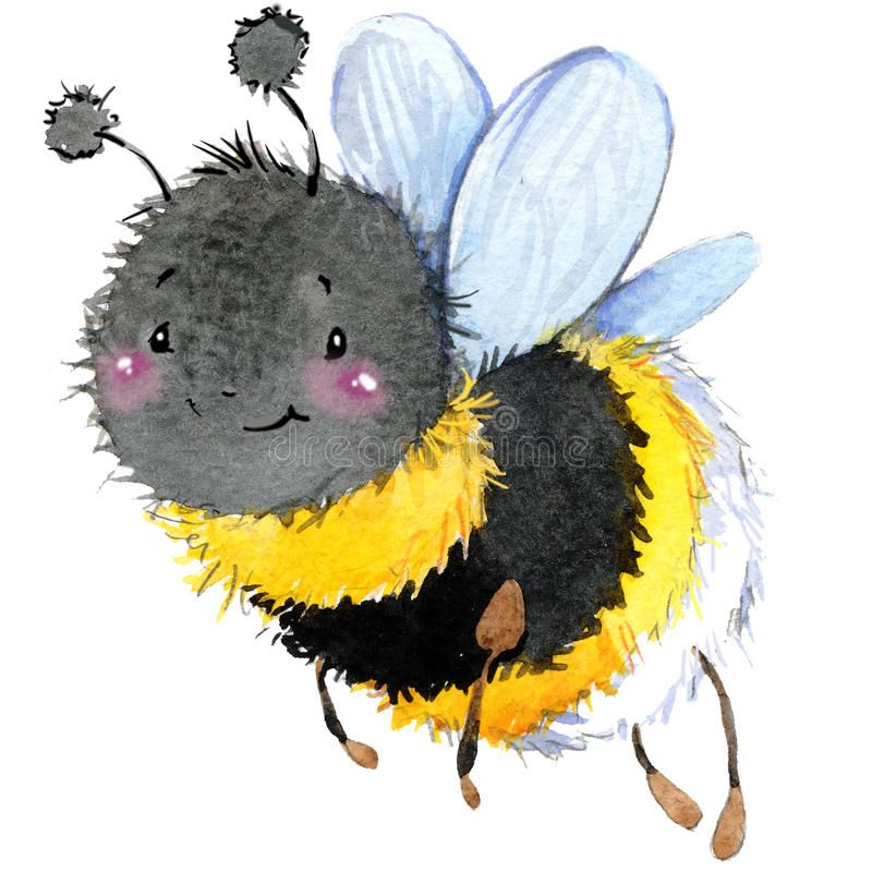 Cartoon Insect Bumblebee Watercolor Illustration On White