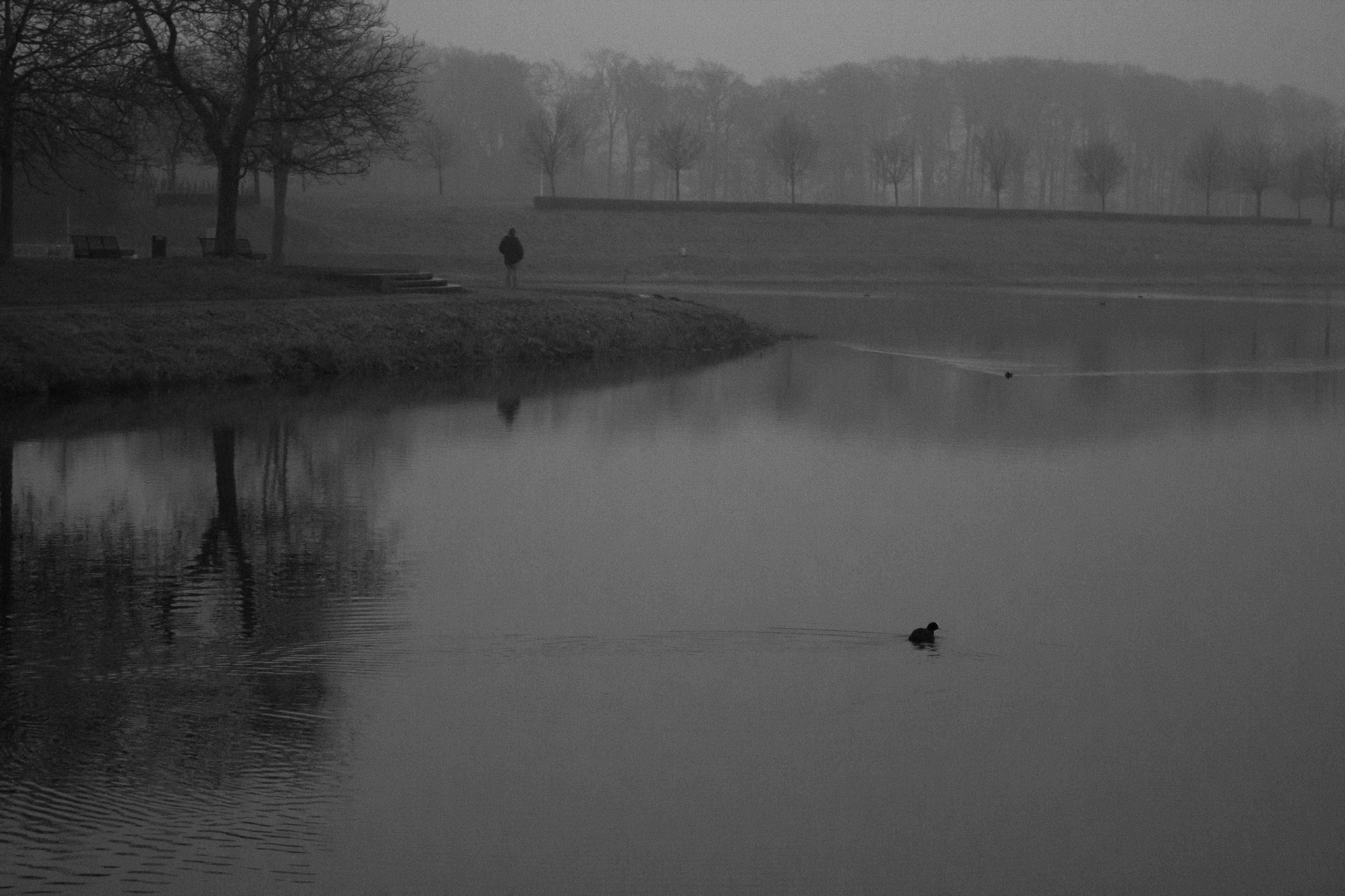 Kanal in winter, Henrichenburg, Germany  Deutschland, Germany, Kanal, Black and White, Grey, Ruhrgebiet, Castrop-Rauxel