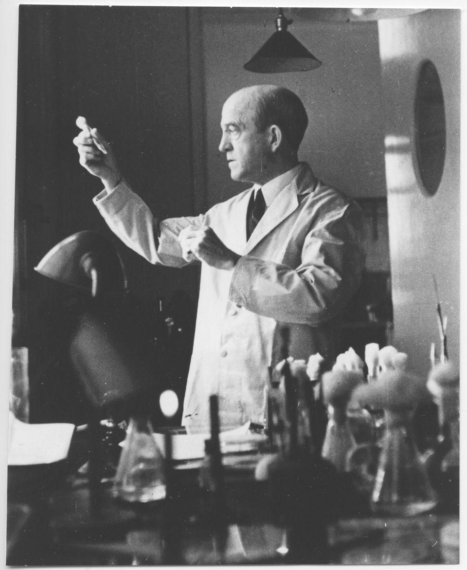 El bacteriólogo estadounidense de origen canadiense Oswald Theodore Avery demuestra que el agente responsable de la transferencia de la información genética no es una proteína, como creían los bioquímicos, sino el ácido nucleico llamado ácido desoxirribonucleico o ADN. 1940