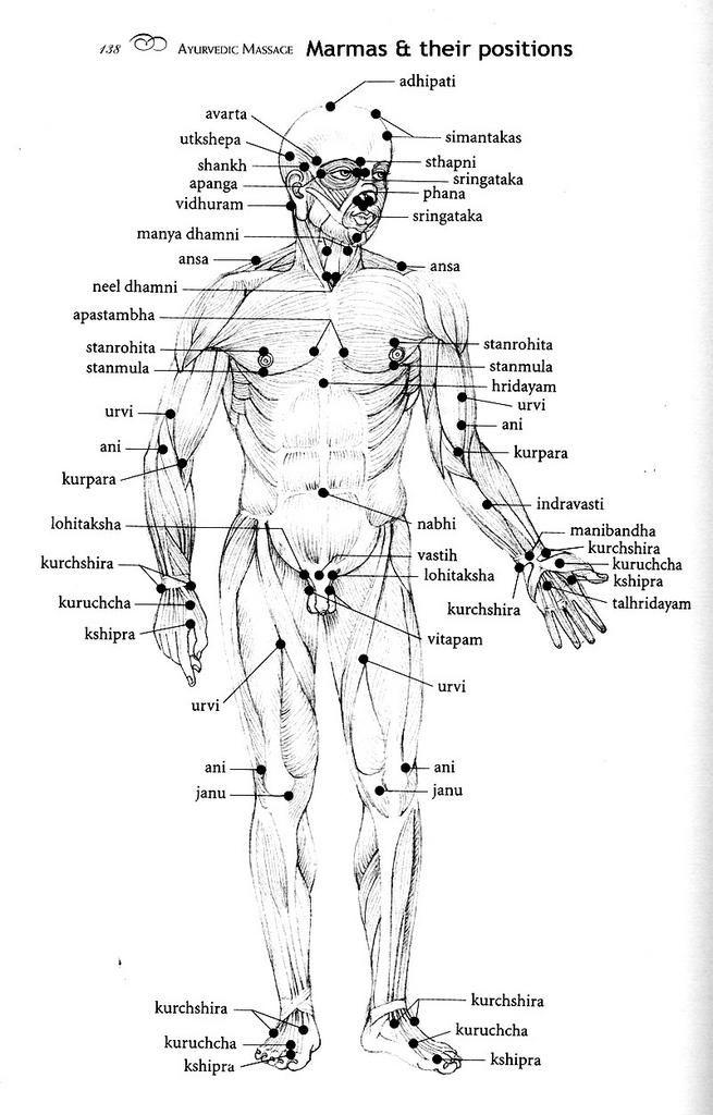 Marma points google search also massage pinterest rh