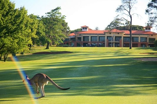 34+ Best golf courses in canberra ideas