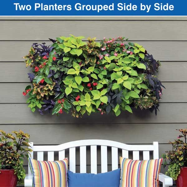 living wall planters by planting hang your living wall planters side by