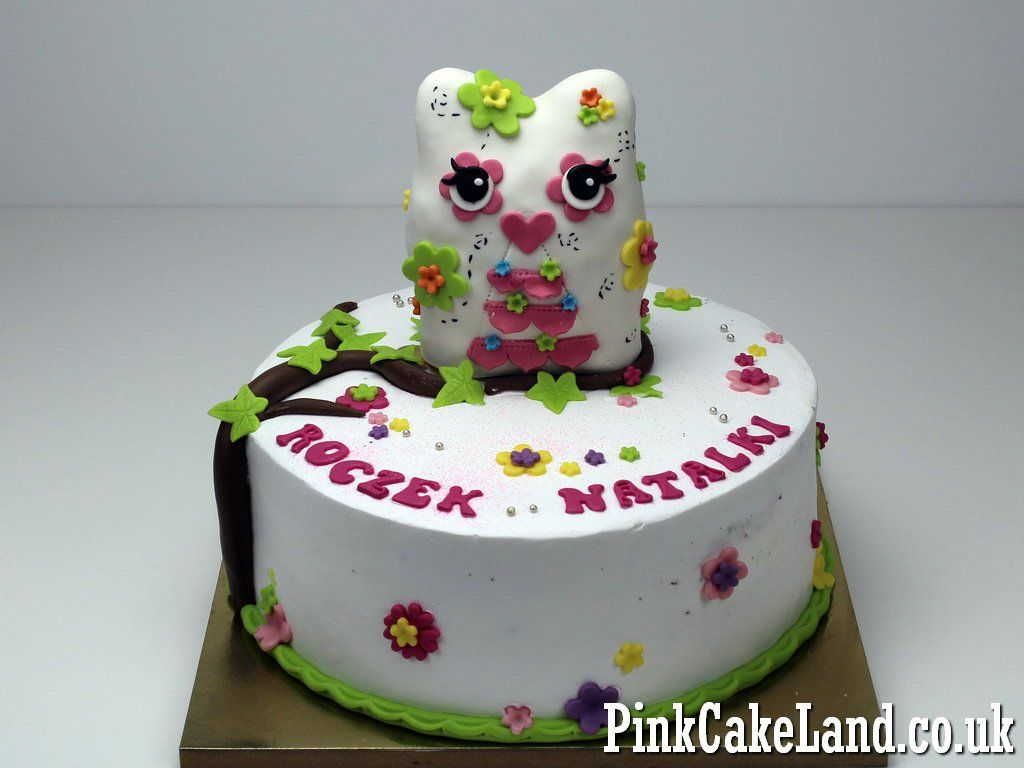 Owl 1st Birthday Cake For Girl In Londonre Owl Cakes Httpwww