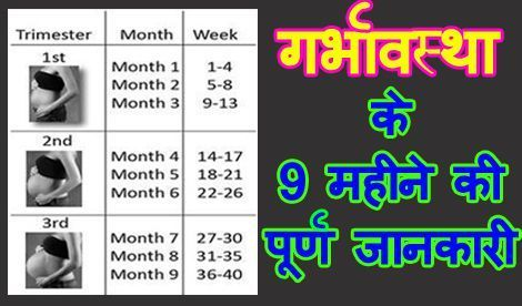 Pin On Pregnancy Months And Weeks In Hindi