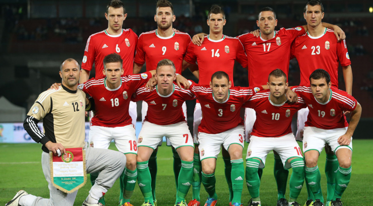 Social Groups This Picture Shows Hungary S National Football Team The Most Popular Sport In Hungary Is So National Football Teams Most Popular Sports Hungary