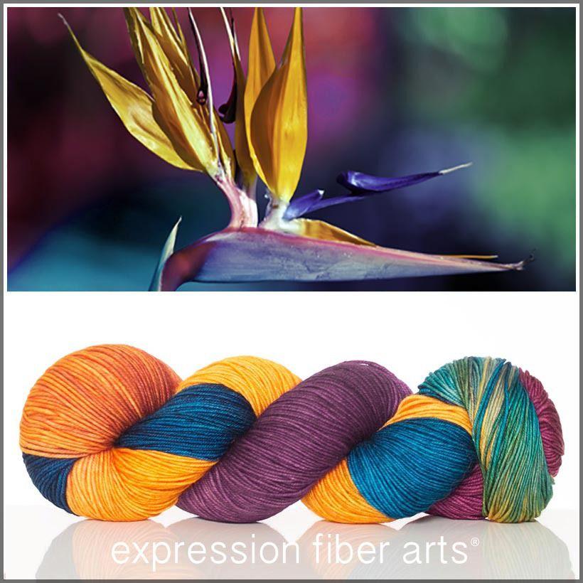 Expression Fiber Arts, Inc. - BIRD OF PARADISE 'RESILIENT' SUPERWASH MERINO SOCK YARN , $24.00 (http://www.expressionfiberarts.com/products/bird-of-paradise-resilient-superwash-merino-sock.html)