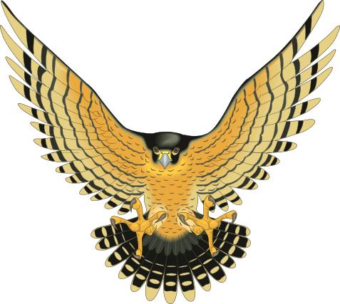 18++ Falcon totem ideas in 2021