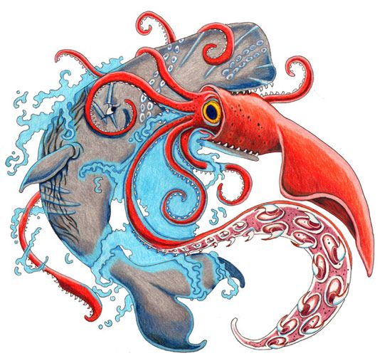how to make a colossal squid