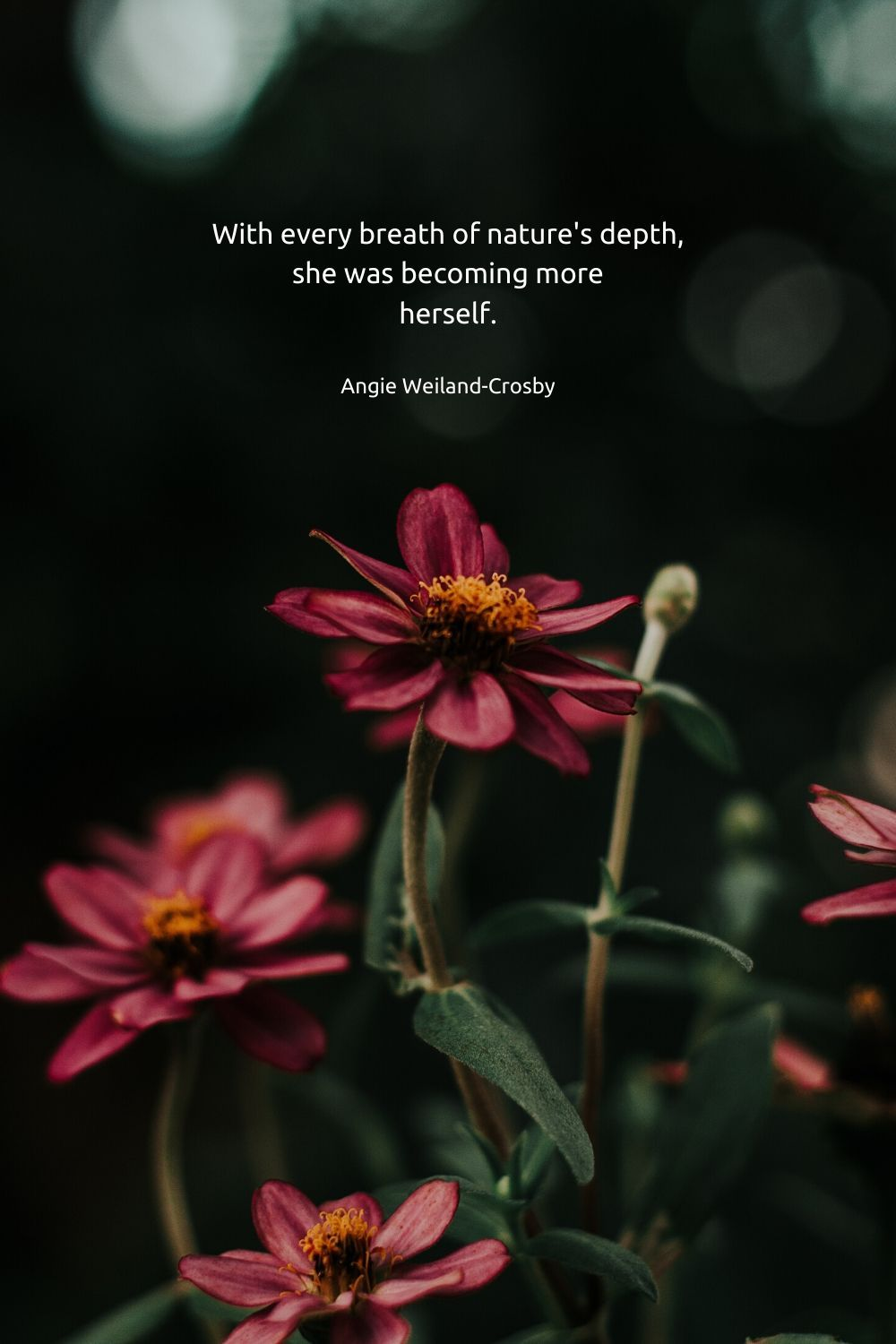 Nature Quotes For The Wandering Soul In 2020 Nature Quotes Nature Quotes Inspirational Nature Girl