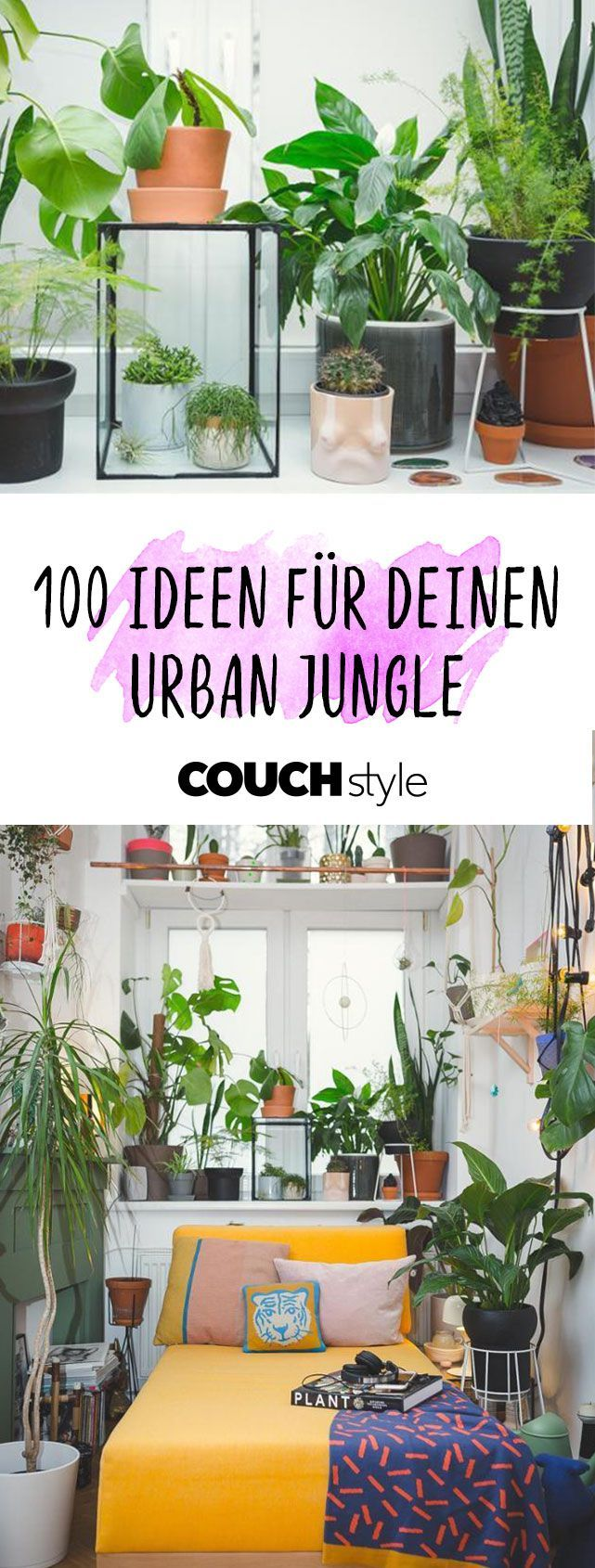 urban jungle • bilder  ideen  urban jungle wohnen mit