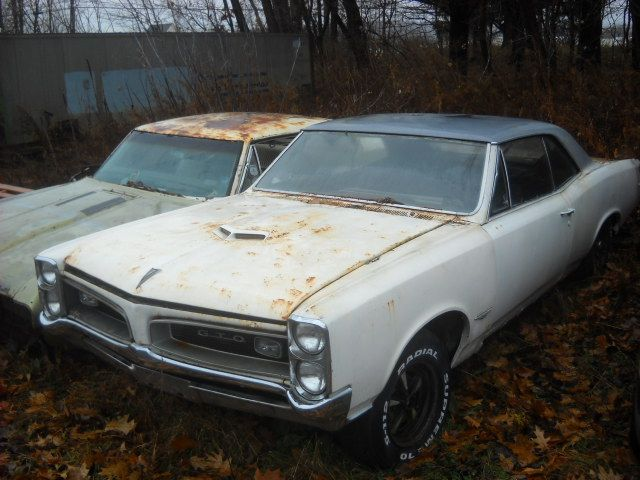 Classic Cars Rotting Rotting Musclecars The Supercar Registry Bulletin Board Muscle Cars American Muscle Cars Mustang Junkyard Cars