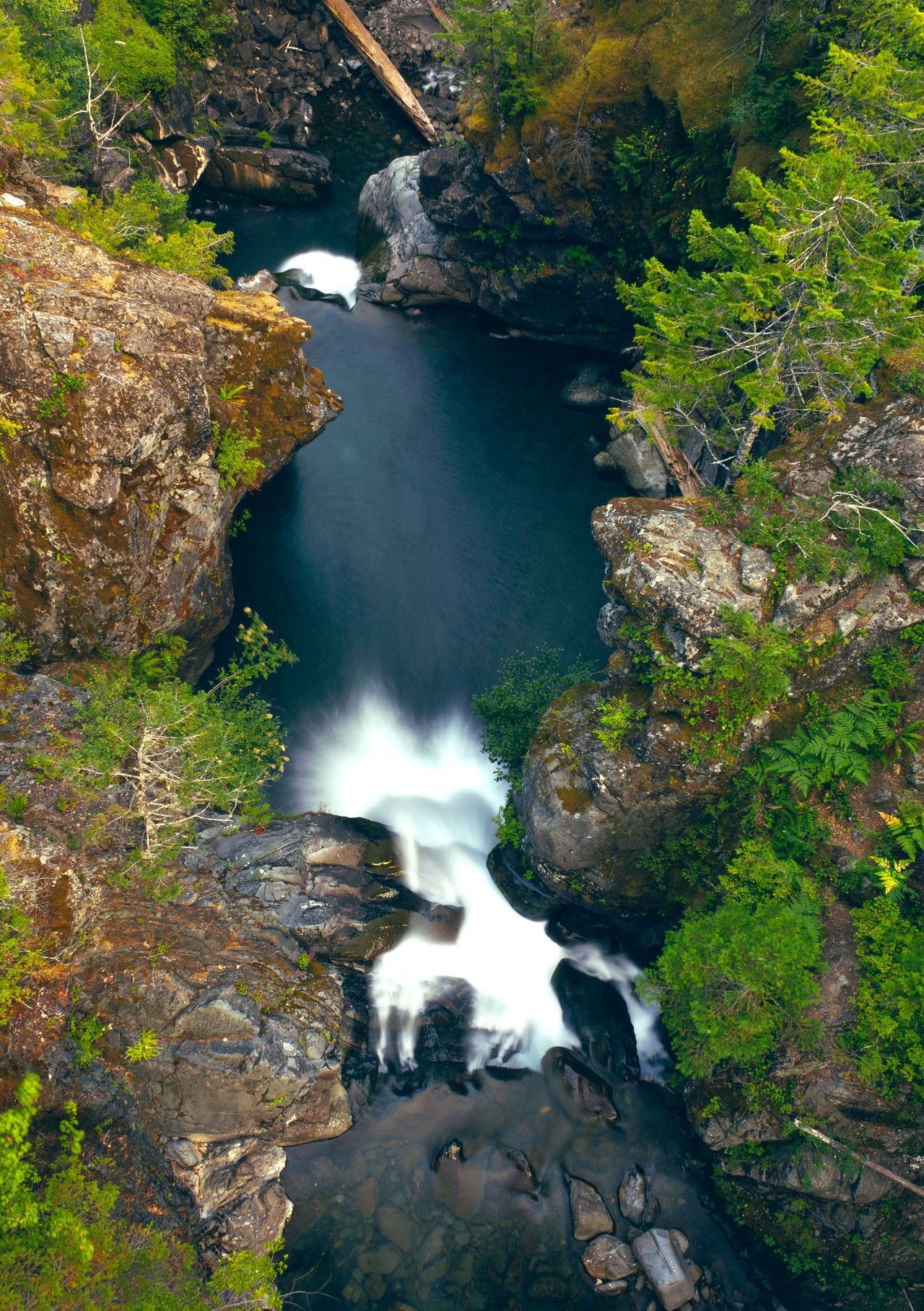 Looking Over Waterfalls On The Hamma Hamma River In Olympic