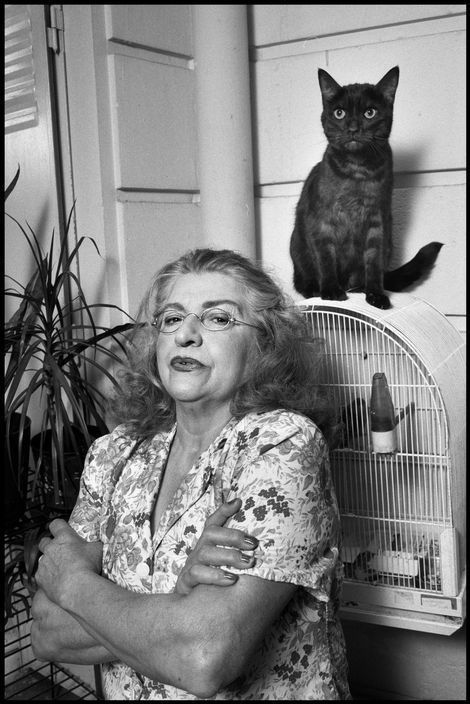 Elliott Erwitt photographed cats primarily including them in his photographs of women. Either in the arms of famous actresses, surrounding old