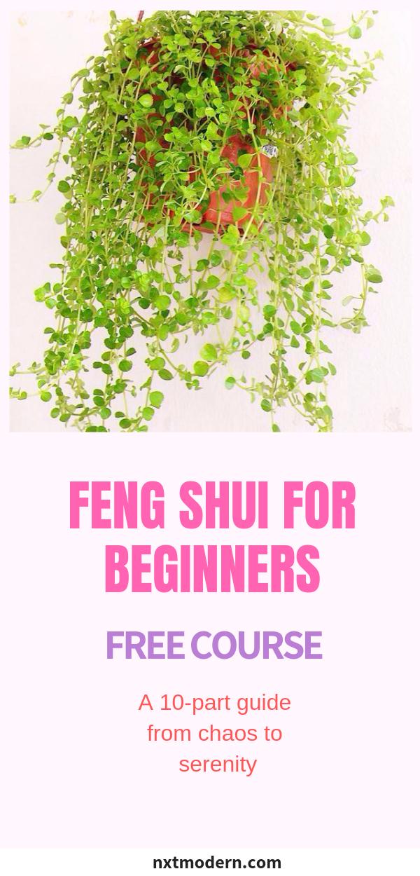Feng Shui For Beginners Free Course Fengshui Freecourse Homedecor Interiors Interiordesign Feng Shui For Beginners Feng Shui Feng Shui Tips