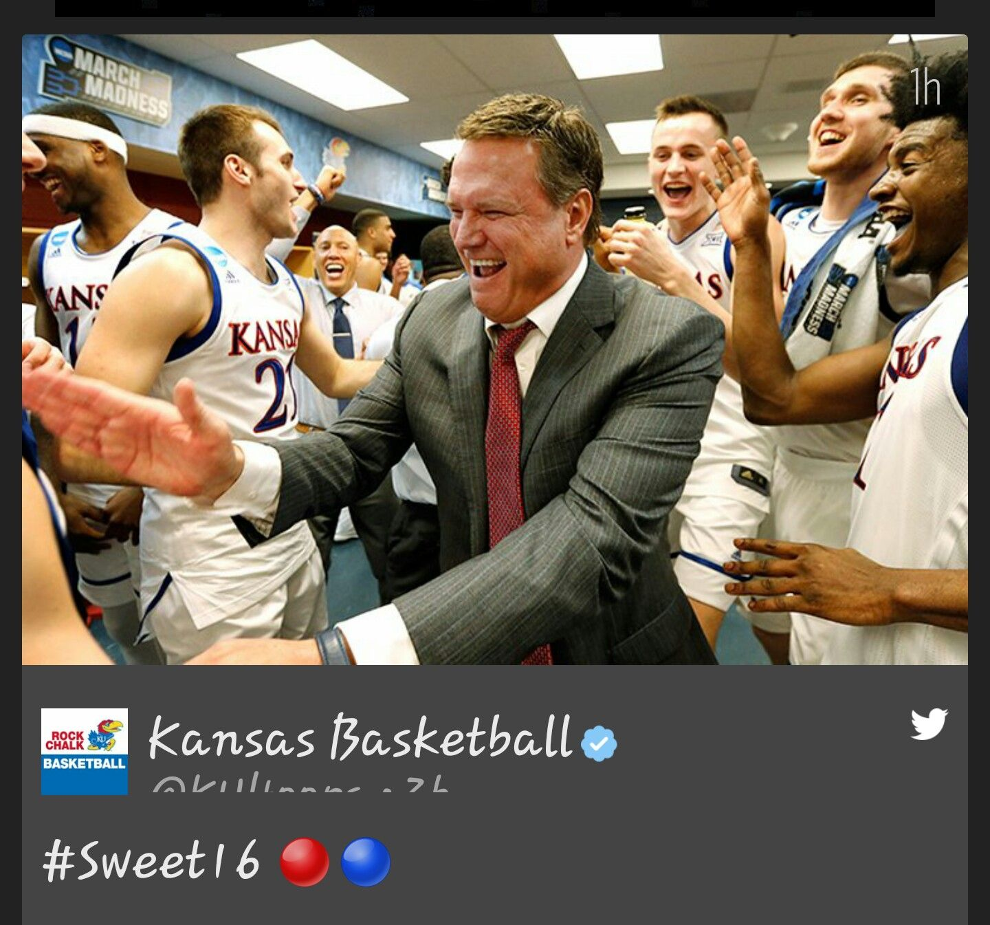 17 best ideas about bill self ku basketball 17 best ideas about bill self ku basketball schedule kansas jayhawks basketball and ku basketball