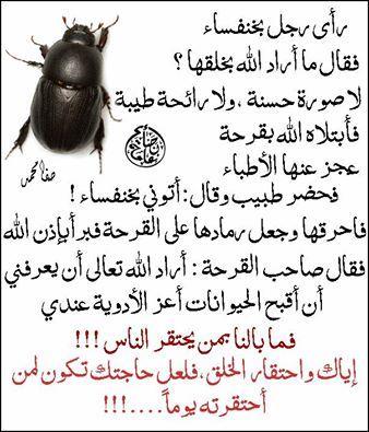 إياك واحتقار خلق الله Arabic Quotes Arabic Love Quotes Arabic English Quotes