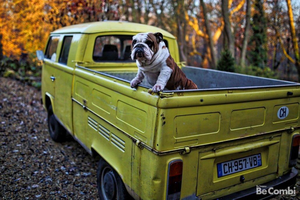 Séance photos avec le T2b pick-up Doka | Be Combi