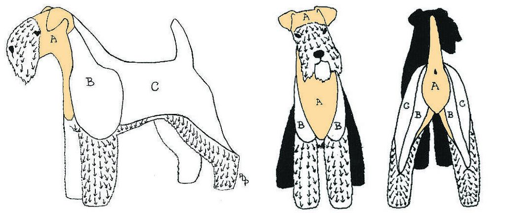 Grooming Sections Flats Wirehaired Fox Terrier Wheaton Terrier Dog Grooming Styles