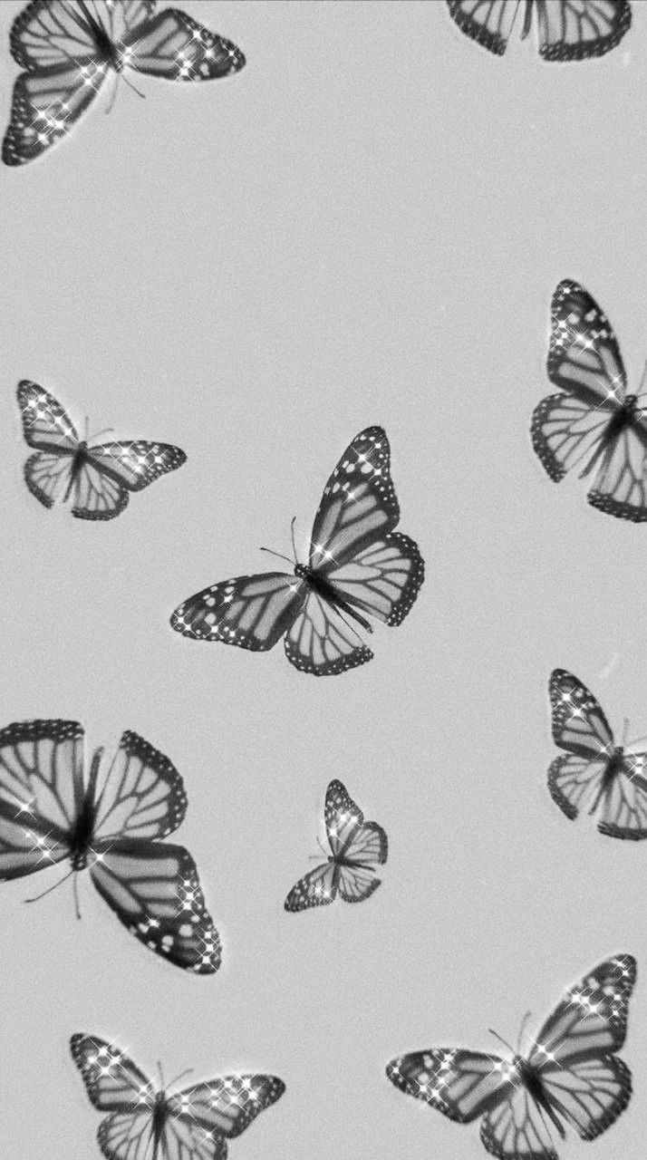 Butterflies In 2020 Butterfly Wallpaper Iphone Edgy Wallpaper Pretty Wallpaper Iphone