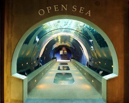 Oregon Cost Aquarium, Newport, Oregon | Oregon coast ...