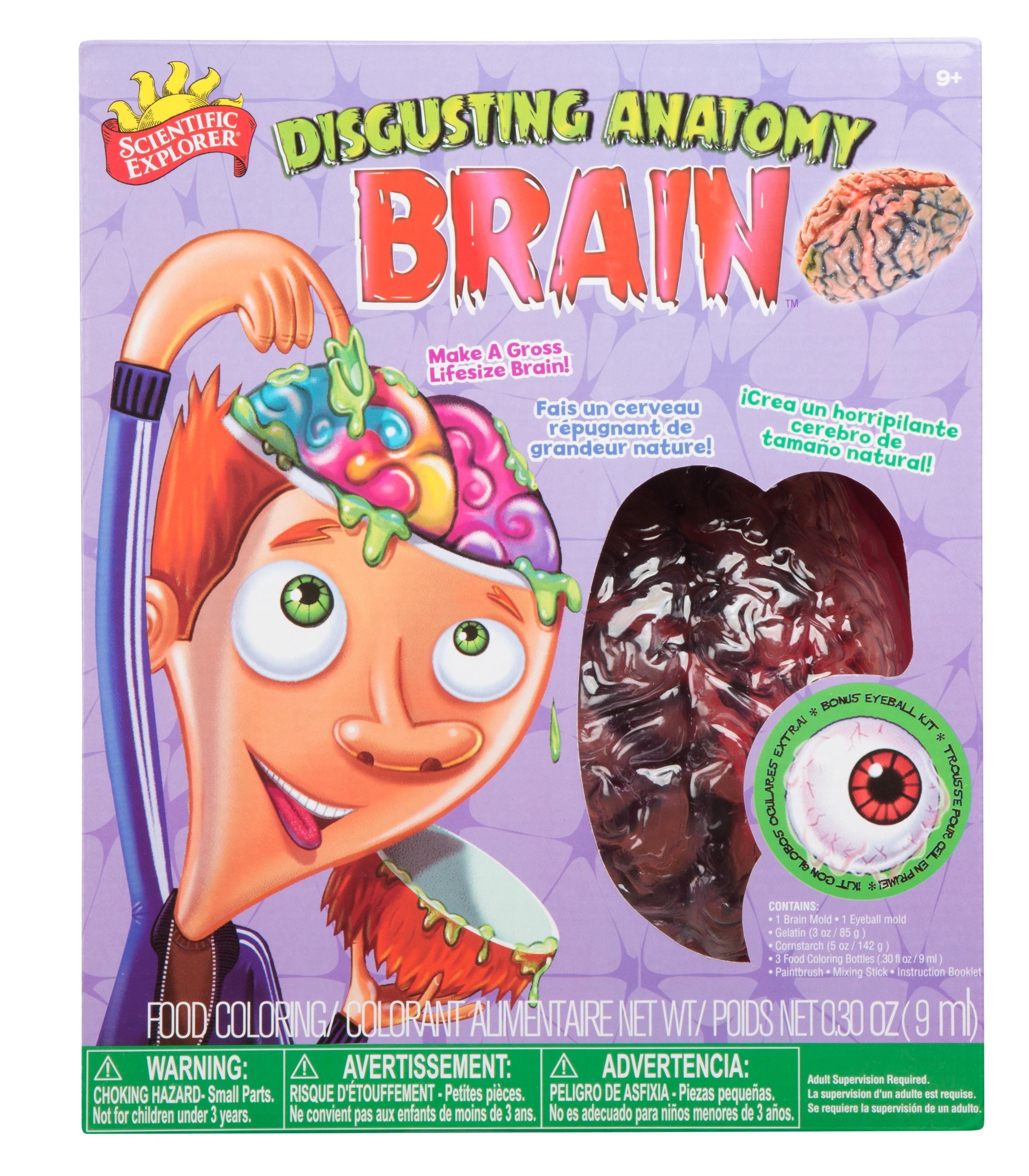 Amazon.com: Scientific Explorer Disgusting Anatomy Brain: Toys ...
