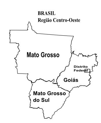 resultado de imagem para mapa da regiao centro oeste atividades