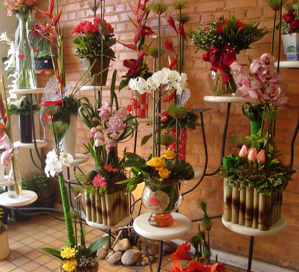 Transforme sua floricultura e impressione - Sebrae Respostas