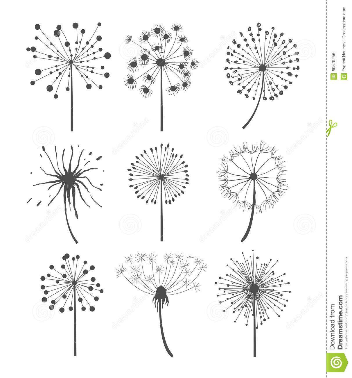 Afficher l 39 image d 39 origine pint pinterest les - Dessin fleur pissenlit ...
