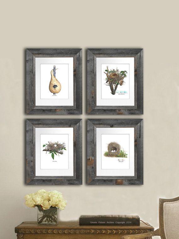 Farmhouse Decor Wall Art Bird Nest Prints Set Of 4 Cottage 8x10 Shabb