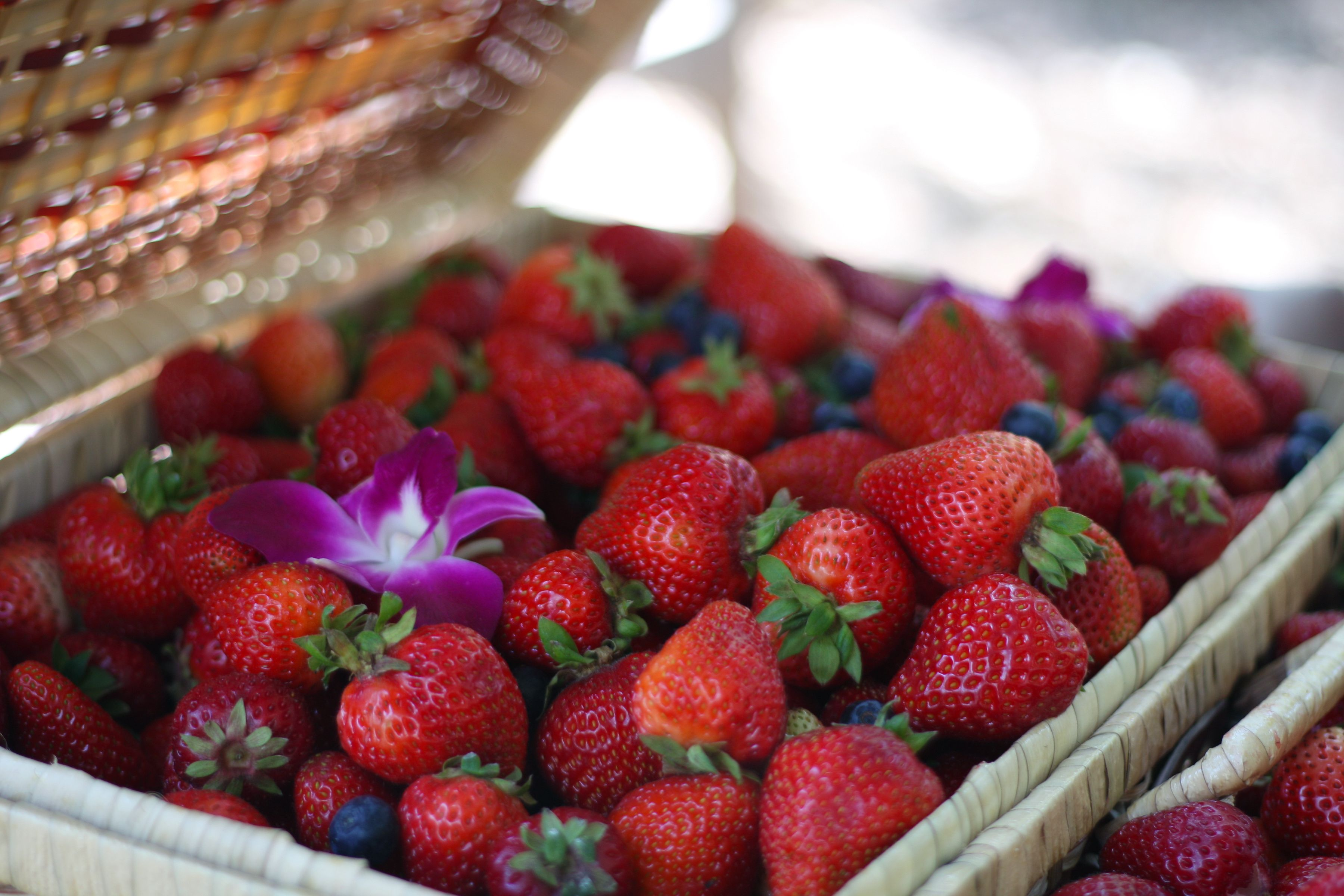 Delicious Strawberries Provided By The Berry Man Wine Festival Strawberry Food
