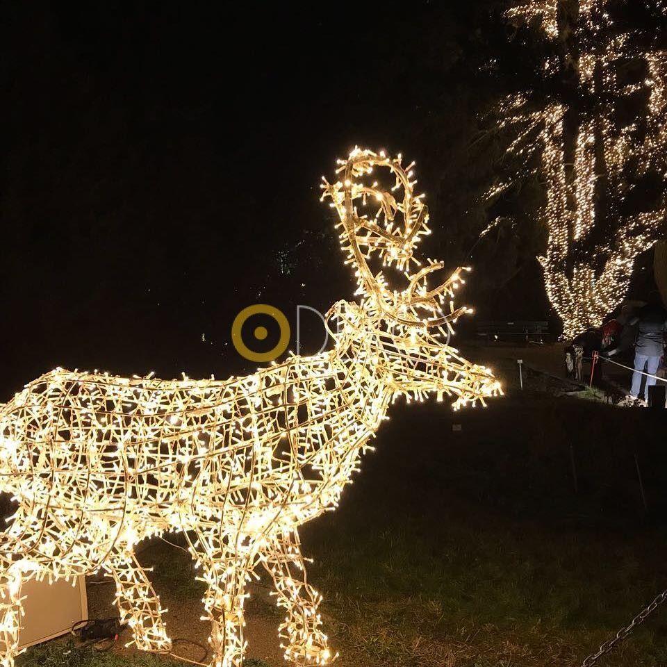 Weihnachtsbeleuchtung Kranz.Gartendeko Ideen Zu Weihnachten 2019 Weihnachten Ceiling Lights