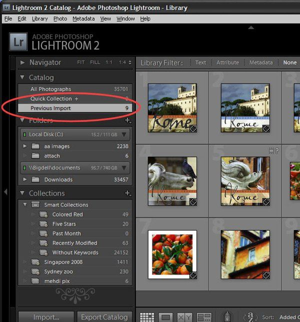 What is lightroom catalog