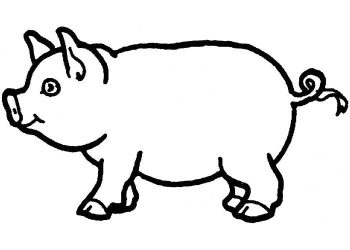 image relating to Printable Pig identified as Pig Template - Animal Templates No cost High quality Templates