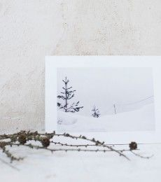 LuciaMphoto15_WinterWhiteness_093