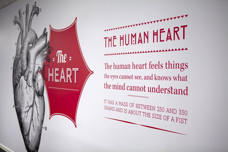 Wall Vinyl Quote about the human heart Office wall designs