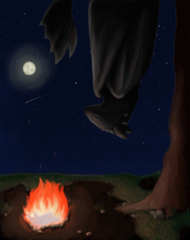 The Dragon Sleeps Tonight By Kerrinbugger On Deviantart How To Train Your Dragon Dragon How Train Your Dragon