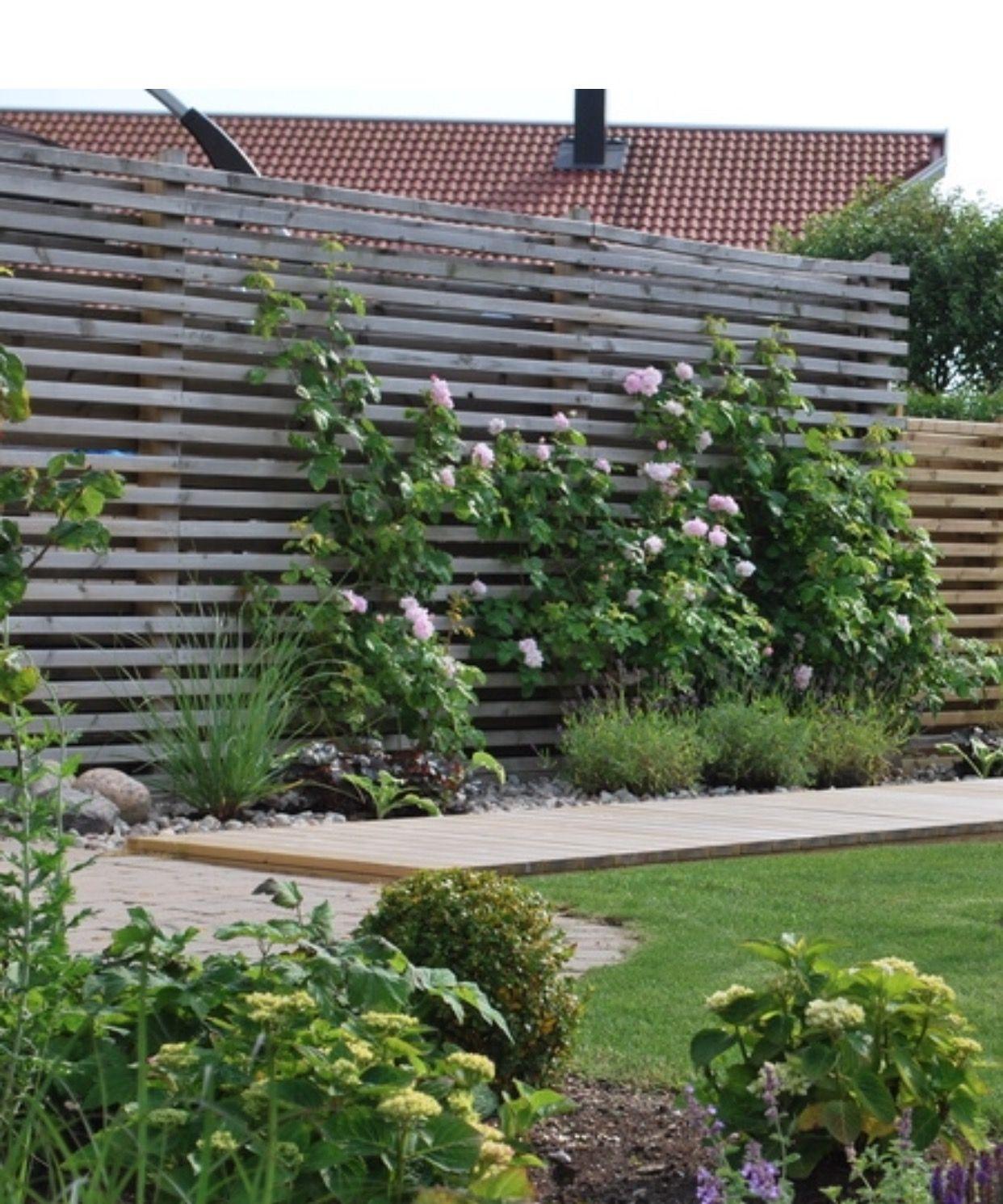 Garten Sichtschutz Von Claudia Novak Garten Sicht Sichtschutz