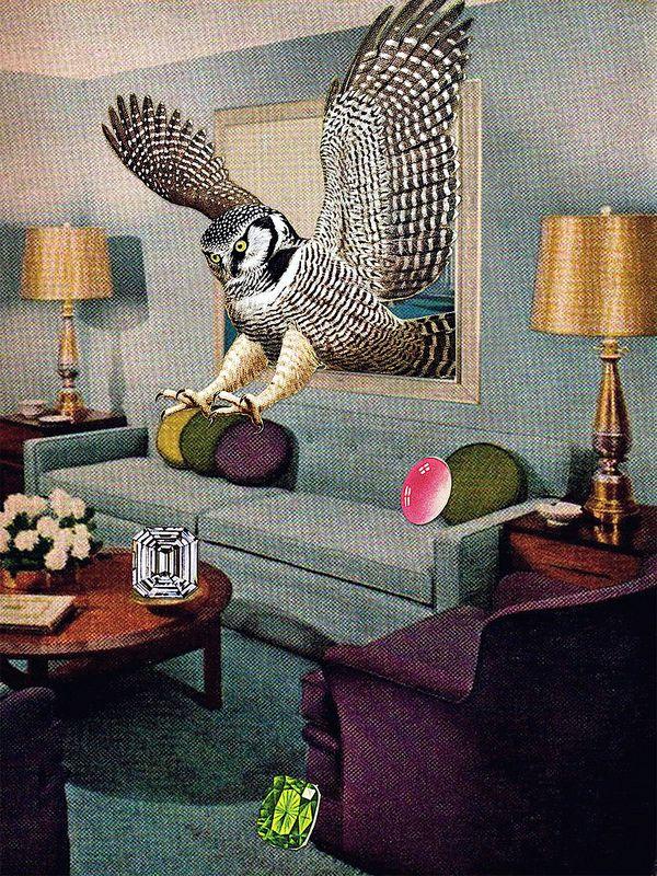 Birds of Prey Eggs, Part II