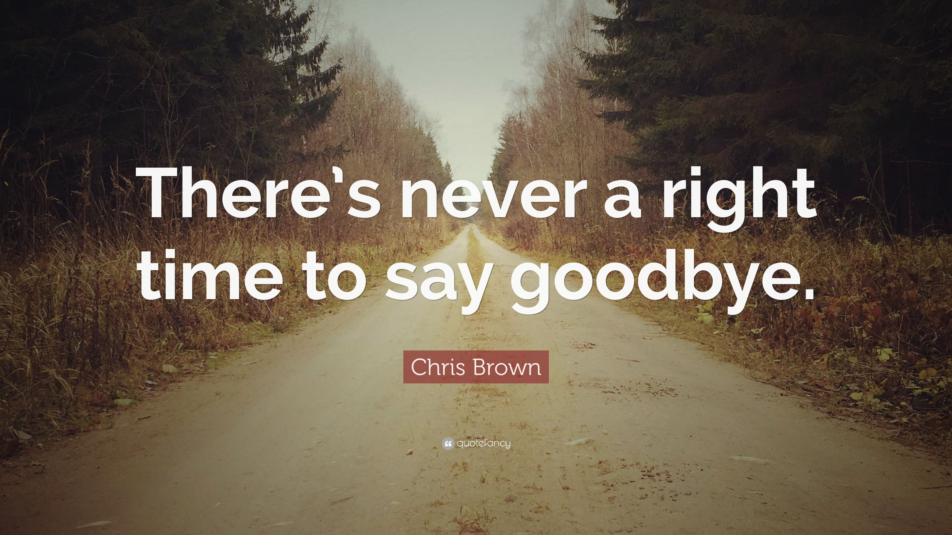 A Life Well Lived Quotes Chris Brown Quotes 9 Wallpapers  Quotefancy  Life  Pinterest