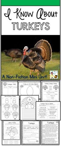 TURKEYS Nonfiction Mini Unit Graphic Organizers & Digital Notebook for Google™.