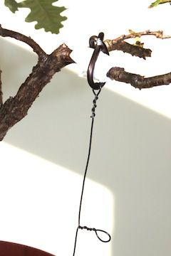 wiring bonsai trees bonsai trees bonsai wire rh pinterest com