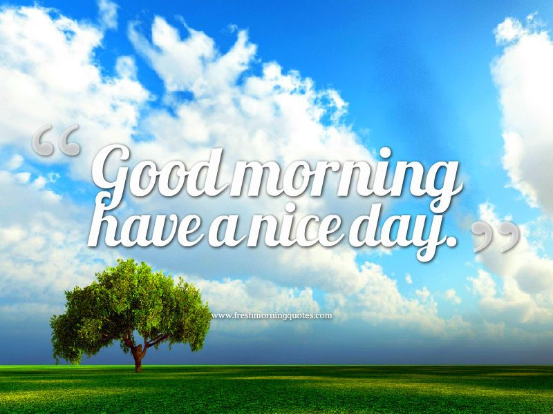 20 Beautiful Good Morning Have A Nice Day Wallpapers God Dag Godmorgen Citater